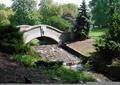 园桥,拱桥,溪流景观,观赏草,乔木
