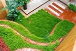 梯田元素营造的台阶,植被是用相思草进行满植