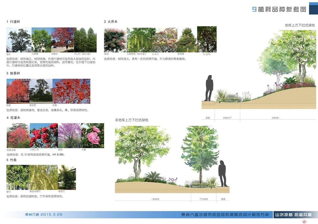 9植栽品种参考图