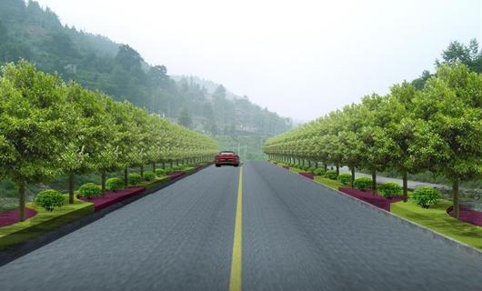 贵州某公路绿化景观设计效果图