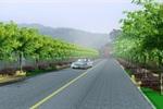 贵州某公路绿化景观设计标段六示意图