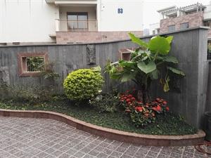 别墅花园实景案例