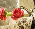 两朵玫瑰花,杯子,特写