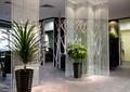 辦公區,隔斷墻,玻璃隔斷,盆栽,入口