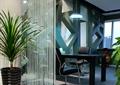 辦公室,隔斷墻,玻璃隔斷,盆栽,辦公桌椅
