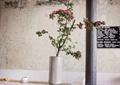 装饰品,盆栽,摆件,装饰柱