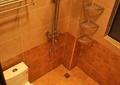卫生间,浴室,马桶,淋浴器