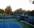 網球場,球場,籃球場