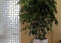 客廳,鏤空隔斷,隔斷,盆栽