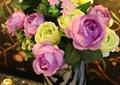 花瓶,植物,玫瑰