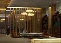 會所,吊燈,茶桌椅,柜子,擺件
