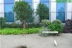 磐基景观--安康屋顶花园景观绿化设计工程