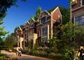 别墅,联排别墅,住宅建筑,住宅景观,道路,花池