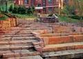 石头台阶,地面铺装,植物
