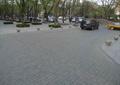 道路,道路铺装,树池,道路景观