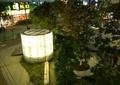 景觀燈,燈柱,路燈,樹池