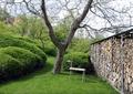 庭院景观,小品,围墙,植物,草坪