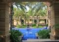 庭院景观,景墙,围墙,泳池,树池