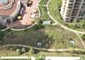 住宅景观,采光井,园路