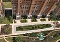 住宅景观,小区景观,园路,绿化景观