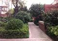 庭院景观,矮墙,铺装
