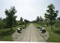 园路,坐凳,乔木,草坪