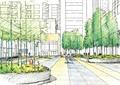 街道景观,花坛,植物
