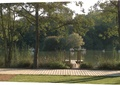 公园,坐凳,园路,乔木,草坪