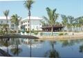 度假村景观,热带植物,水景