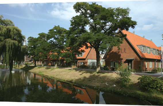 住宅景观,乔木,河道景观,驳岸