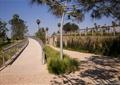 园路,栏杆,观赏草,乔木,地面铺装