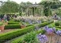 公园景观,花架,花卉植物,花钵