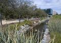 河道景观,景石,驳岸,草本植物,乔木
