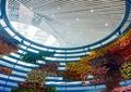 植物墙,垂直绿化,园博园,展览馆