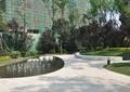 住宅景观,喷泉水景,园路,地面铺装,矮墙,草坪