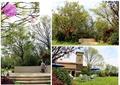 庭院景观,台阶,庭院灯,景观植物,草皮