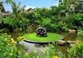 灯饰,草坪,水景,景石,植物