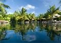 游泳池景观,热带植物,遮阳伞
