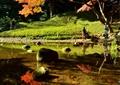 水景,景石,园路,草坪,乔木