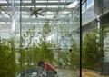玻璃墻,屋頂花園,天空花園