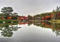 湖泊景觀,水景,廊橋,水榭,亭子,公園景觀