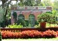 盆景,灌木球,花卉植物,矮墻,庭院