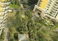 小区景观,住宅景观,采光井,景观植物