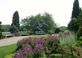 花卉植物,草坪,园路,坐凳,乔木
