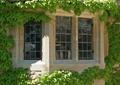 鄉村住宅,外墻裝飾,花墻,窗戶