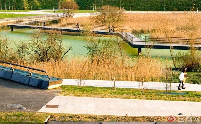 园路,地面铺装,草坪,水景,桥