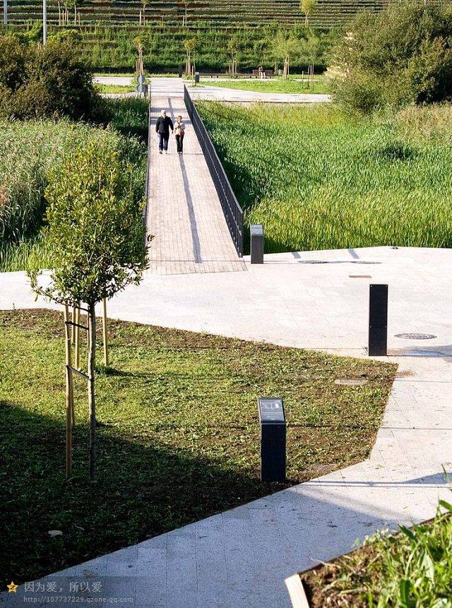 桥,园路,地面铺装,草坪,植物