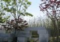 台阶,拱门,景墙,树池,坐凳