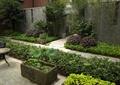 水缽,水生植物,灌木植物,園路,地面鋪裝,灌木球,圍墻,住宅景觀