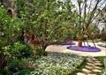 汀步景观,花卉植物,草坪,树池,地面铺装,常绿乔木,花园,住宅景观